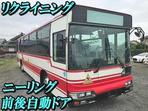 Blue Ribbon Bus_1