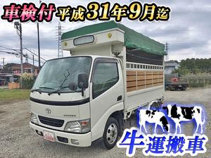 Toyoace Cattle Transport Truck_1