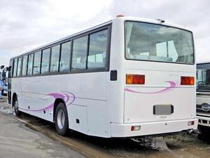 Blue Ribbon Tourist Bus_2