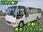 Rosa Micro Bus