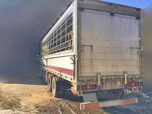 Giga Cattle Transport Truck_2