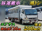 Fighter Cattle Transport Truck