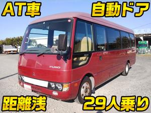 Rosa Micro Bus_1